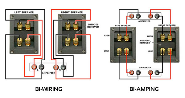 bi wire diagram lawn tractor ign switch wire diagram five wire bi wire ps audio