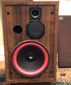 Vintage Cerwin-Vega D-5 speakers with that familiar red woofer surround. These have front ports though!