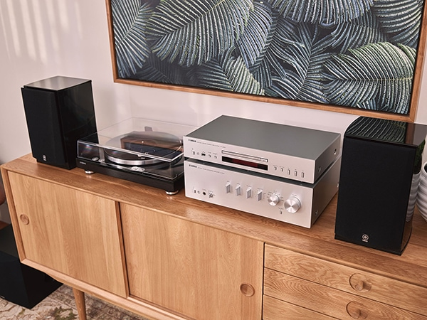 TT-S303 turntable and system.